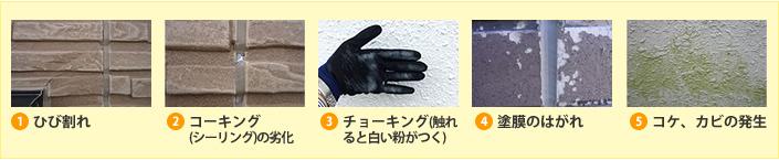 ひび割れ、コーキング、チョーキング、塗膜のはがれ コケ、カビの発生